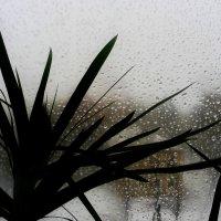 А за окном.... :: Юлия Закопайло