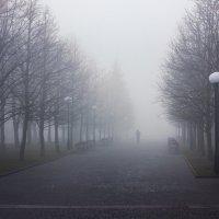 Туманная аллея... :: Сергей