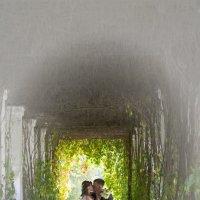 свадьба Марьино :: Алексей Костюнин
