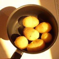 """""""Половину картошки почисть и свари!"""" -просьба жены. :: Alexey YakovLev"""