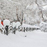 Снежный караул. :: юрий Амосов
