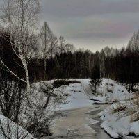 Просыпается лесная река :: Николай Масляев