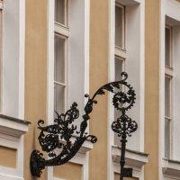 Вена :: Надежда Лаптева