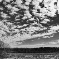 Облака :: Екатерррина Полунина