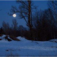 Лунная ночь :: Александр Максимов