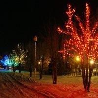 Вечером в парке :: Лидия (naum.lidiya)