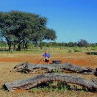 Африканский Пейзаж.  Намибиа. :: Jakob Gardok
