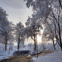 Зима :: Ольга Милованова