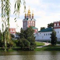 Новодевичий монастырь :: Александр Rehc