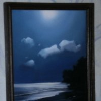 лунная ночь :: Александр
