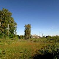 Деревенская окраина :: Светлана