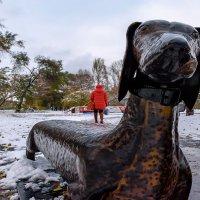 Самый дружелюбный пёс :: alteragen Абанин Г.