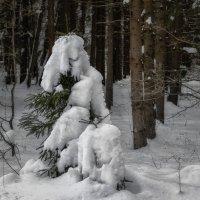 Тяжела одежка зимняя ... :: Va-Dim ...