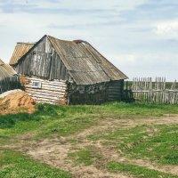 Весна в деревне :: Наталья Ильина