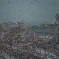 3 апреля,опять снег! :: Юрий Фёдоров