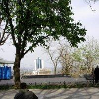 На Приморском бульваре Одессы... :: Светлана Z.