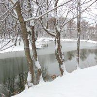 И первый снег... и первый лед... :: Вячеслав Маслов