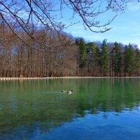 Апрельский денёк на одном из озер Аугсбурга... :: Galina Dzubina