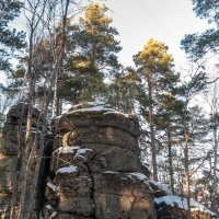 В лесу :: Ирина