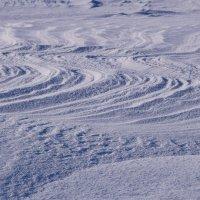Снежный пляж :: Виталий Россия