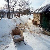 На дворе дрова..) :: Aioneza (Алена) Московская
