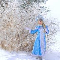 Зимняя сказка :: Елена