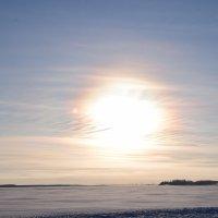 Морозная свезесть :: Виталий Россия