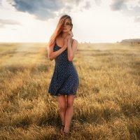 ____ :: Светлана Виноградова
