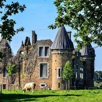 замок Буа-Тибо XV-XVI век (chateau du Bois-Thibault) :: Георгий