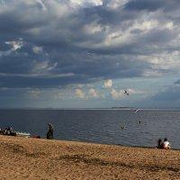 На летнем заливе :: Aнна Зарубина