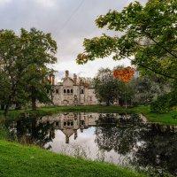 Живописный пруд :: Надежда Лаптева