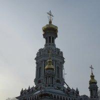 Новый :: Митя Дмитрий Митя