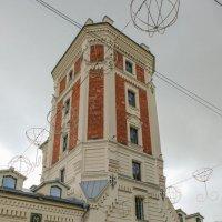 Царское село. Певческая башня. :: Надежда Лаптева