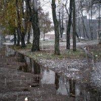 Начало зимы :: Роман Савоцкий