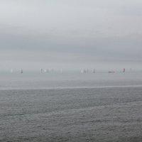 Северное море :: Elena Ignatova