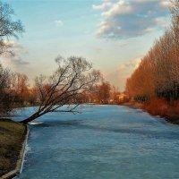 Краски апреля на закате... :: Sergey Gordoff