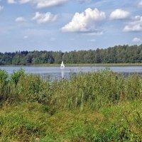 Вид на Валдайское озеро :: Галина Каюмова