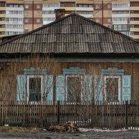 Соседи :: Татьяна Золотых