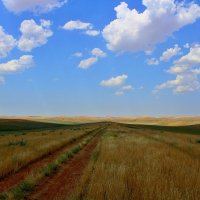 В степях Казахстана :: Roman PETROV