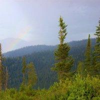 Сыплет мелкий дождь :: Сергей Чиняев