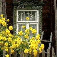 Старый дом в Плёсе :: Надежда