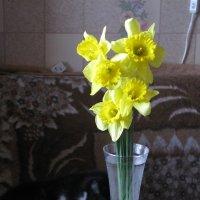 Весенний букетик. :: ТАТЬЯНА (tatik)