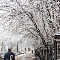 Весенние санкции зимы :: Микто (Mikto) Михаил Носков