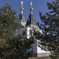 Елизаветинская церковь. :: Анатолий. Chesnavik.