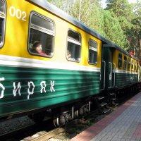 Вагоны поезда :: Марина Таврова
