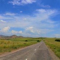 В Казахстане :: Roman PETROV
