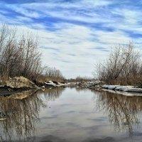 И вешних вод извечное теченье.. :: Андрей Заломленков