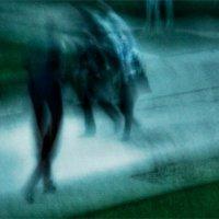 Фантомы. :: Вера Катан