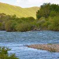 Река Сусамыр :: santamoroz