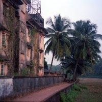Индия - Махараштра, пленка 35мм kodak portra 400 :: Александр Грибакин